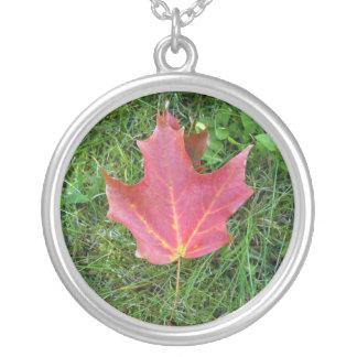 Colar Banhado A Prata Uma folha de bordo vermelha na grama