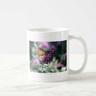 Coleção da borboleta de monarca - caneca de café