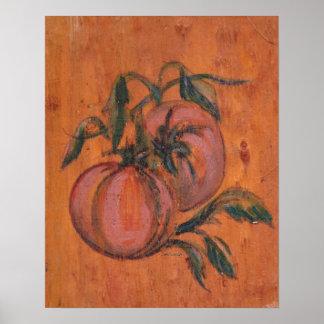 Coleção da decoração da cozinha - tomates poster