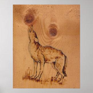 Coleção da natureza - lobo do urro poster