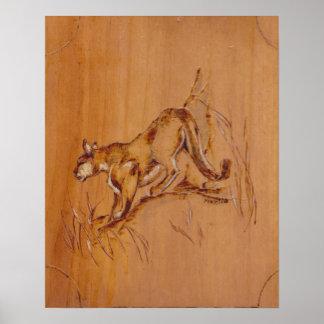 Coleção da natureza - puma poster