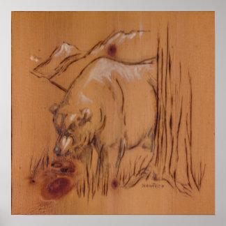 Coleção da natureza - urso poster
