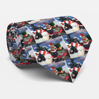 Coleção do gato do tinir gravata