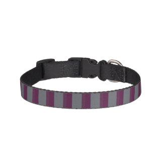 Coleira de cão listrada roxa e cinzenta escura