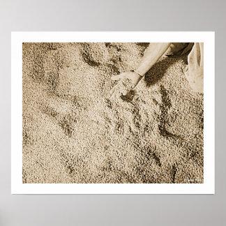 Colheita do arroz, história, Puerto Rico Poster