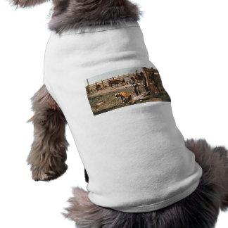 Colorado que marca 1904 camisa sem mangas para cachorro