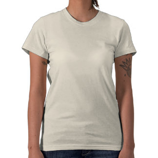 Com fome para Obama roupa americano para senhoras Camiseta