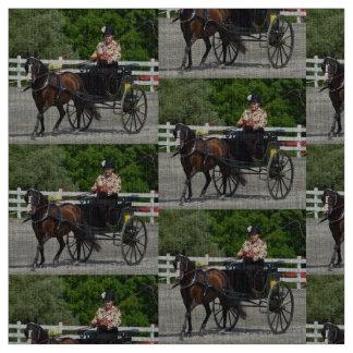 condução da carruagem tecido