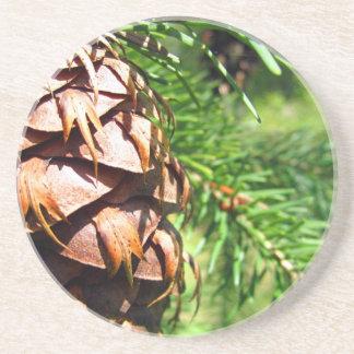 Cone de Brown Porta Copos De Arenito