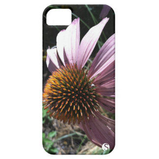 Coneflower roxo capa barely there para iPhone 5