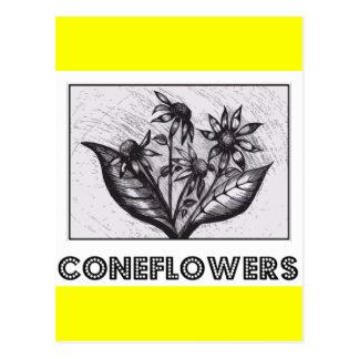Coneflowers Cartão Postal