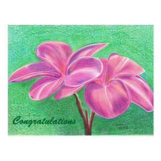 Congratulations Cartao Postal