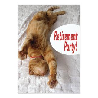 Convite de festas da aposentadoria com gato