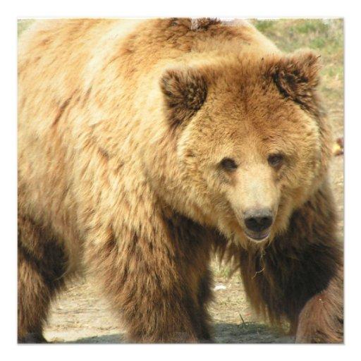 Convite do urso de urso