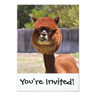 Convite engraçado da alpaca