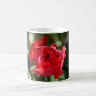 Copo de café diminuto da rosa vermelha caneca de café