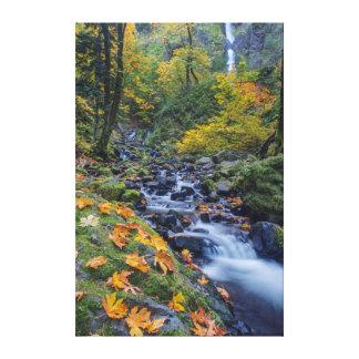 Cor do outono ao longo das quedas da angra da impressão de canvas envolvida
