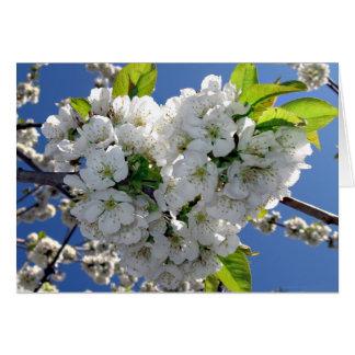 Coração da flor de cerejeira cartão