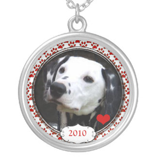 Coração datado sua colar da foto do cão