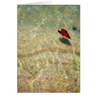 Coração de flutuação cartão comemorativo