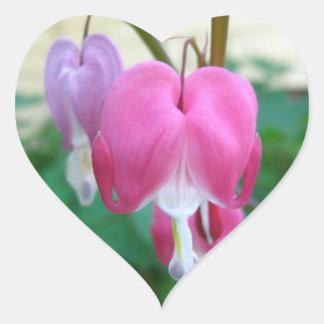 Coração de sangramento adesivo coração