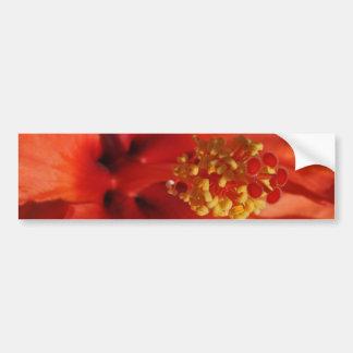 Coração de uma flor alaranjada do hibiscus adesivo para carro