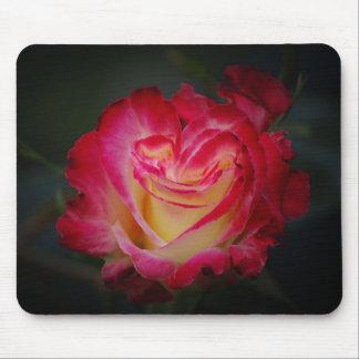 Coração de uma flor Mousepad do rosa