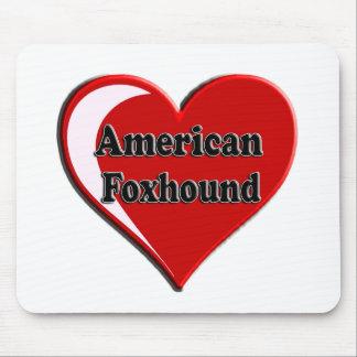 Coração do cão do Foxhound americano