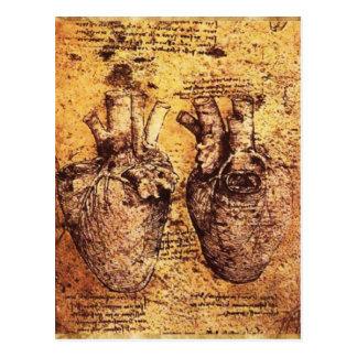 Coração e seu pergaminho dos vasos sanguíneos cartão postal
