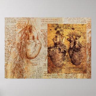 Coração e seus vasos sanguíneos/artérias poster