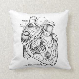 Coração humano da anatomia do vintage preto e almofada