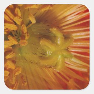 Coração sensual do pólen da flor carregado Cumpri Adesivos