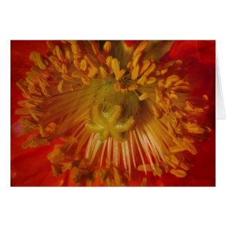 Coração sensual do pólen da flor carregado Cumpri Cartoes
