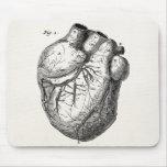 Corações cardíacos retros da anatomia do coração d mouse pad