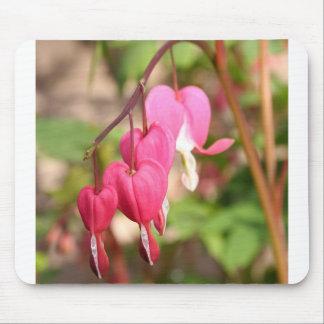 Corações de sangramento cor-de-rosa mouse pad