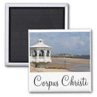 Corpus Christi, ímã de Texas Íman