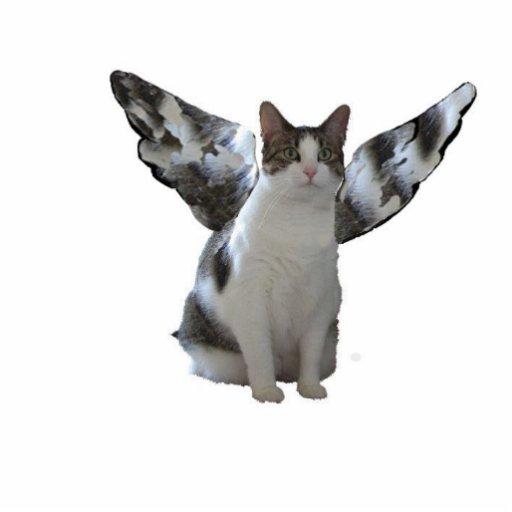 Corrente chave do gatinho do anjo fotoescultura