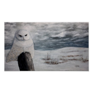 Coruja da neve no poster pequeno da pradaria
