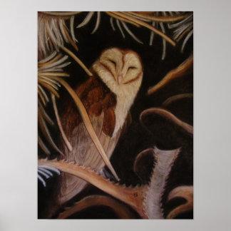 coruja de celeiro do sono na pintura animal pastel posters