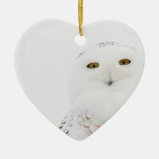 Coruja nevado do pássaro animal que olha me ornamento de cerâmica coração