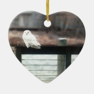 Coruja nevado ornamento de cerâmica coração