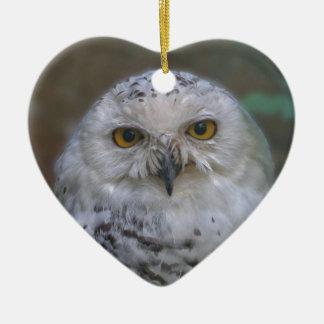 Coruja nevado, Schnee-Eule Ornamento De Cerâmica Coração