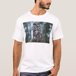 Coruja Tshirts