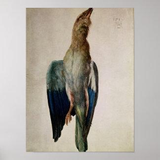Corvo azul, 1512 pôster