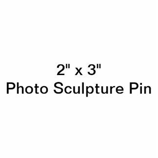 """Costume 2"""" x 3"""" Pin da escultura da foto Escultura Fotos"""