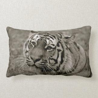 Coxim preto e branco do tigre travesseiros de decoração