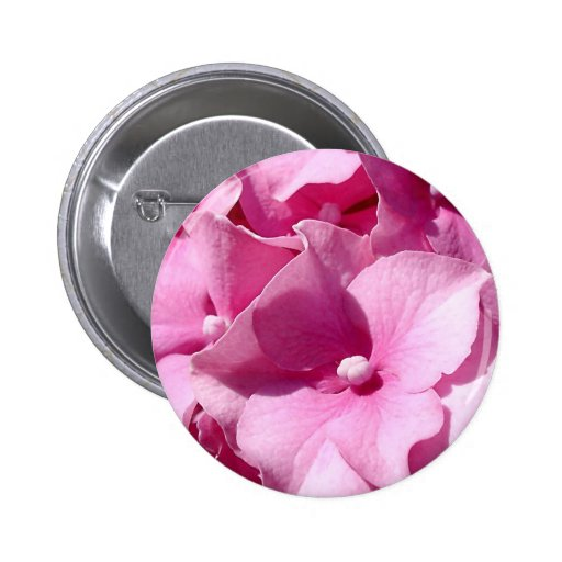 Crachá/botão cor-de-rosa do Hydrangea Boton