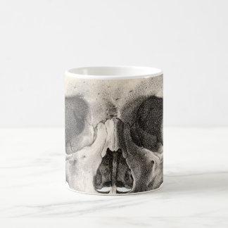 Crânio humano da anatomia do vintage, esqueleto do caneca de café