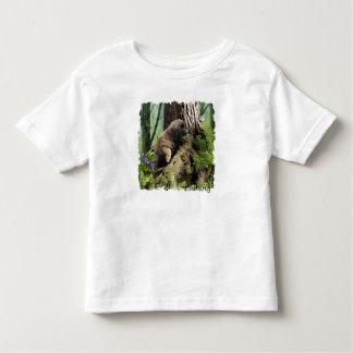 Criança Ludwig os t-shirt do filhote de cachorro