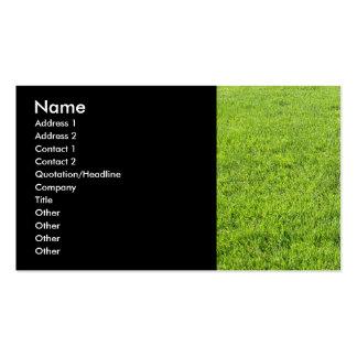 Cuidado do gramado cartão de visita